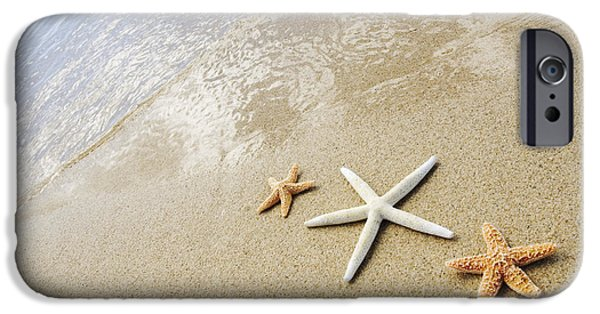 Locations iPhone Cases - Seastars on Beach iPhone Case by Mary Van de Ven - Printscapes