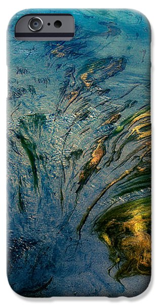 Seaweed Islands iPhone Case by Venetta Archer