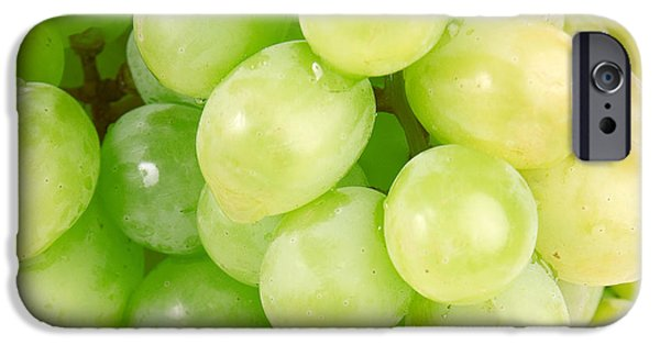 Vinegar iPhone Cases - Seedless iPhone Case by Cheryl Young
