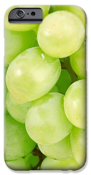Seedless iPhone Case by Cheryl Young