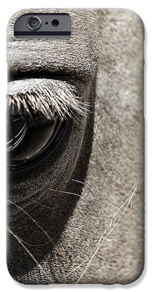 Seeing iPhone Case by Marilyn Hunt