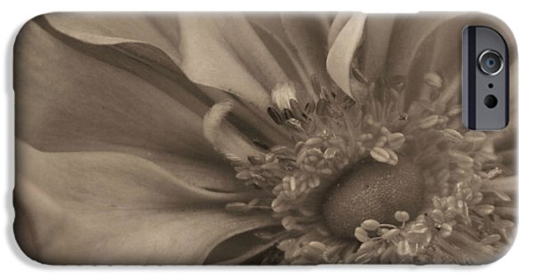 Sepia Flowers iPhone Cases - Sepia Floral iPhone Case by Kristin Elmquist