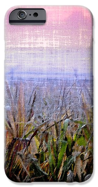 September Cornfield iPhone Case by Bill Cannon