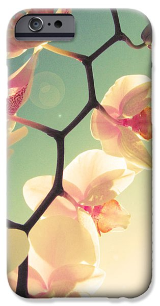 Macro iPhone Cases - Serenade iPhone Case by Amy Tyler