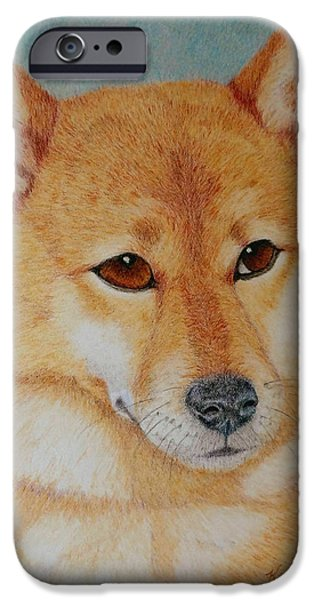 Dog Close-up Drawings iPhone Cases - Sheba Inu  iPhone Case by Karen Curley