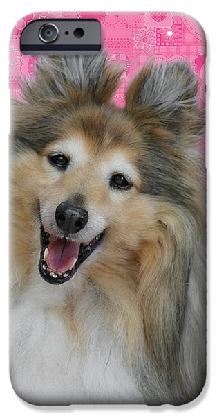 Sheltie iPhone Cases - Sheltie Smile iPhone Case by Christine Till