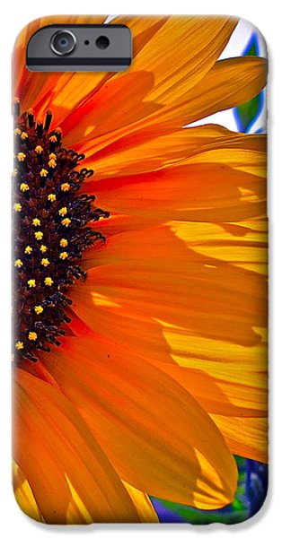 Sunflower Photograph iPhone Cases - Shhhhh iPhone Case by Gwyn Newcombe