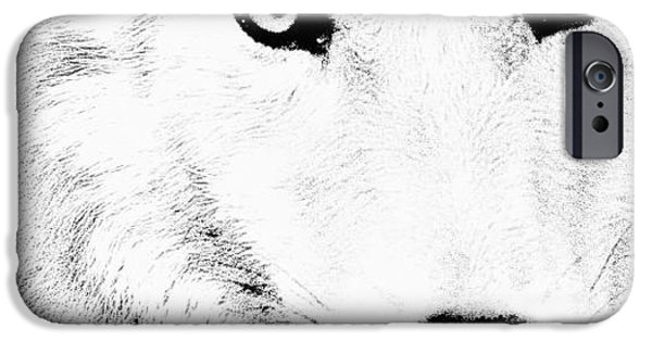 Close Up Drawings iPhone Cases - Shy Wolf iPhone Case by Debra     Vatalaro