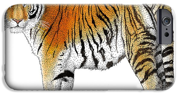 Fauna Drawings iPhone Cases - Siberian Tiger iPhone Case by Roger Hall and Photo Researchers