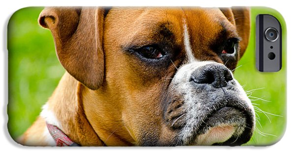 Boxer Photographs iPhone Cases - Sidney The Boxer iPhone Case by Chris Thaxter