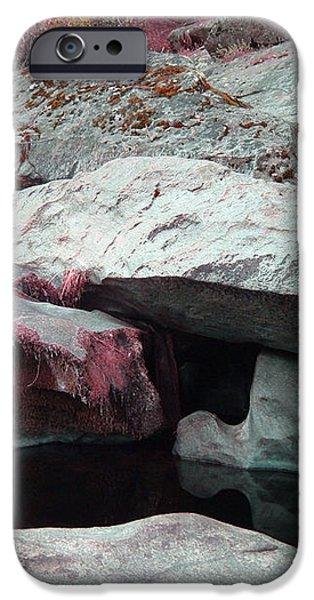 Sierra Nevada Forest iPhone Case by Naxart Studio