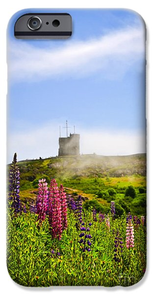 Cabot iPhone Cases - Signal Hill in St. Johns Newfoundland iPhone Case by Elena Elisseeva