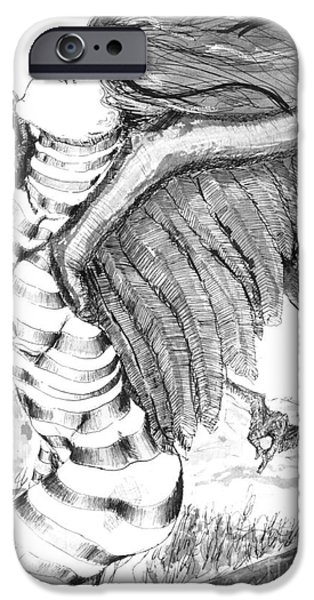 Stripe Drawings iPhone Cases - Silent Flight iPhone Case by Ron Bissett