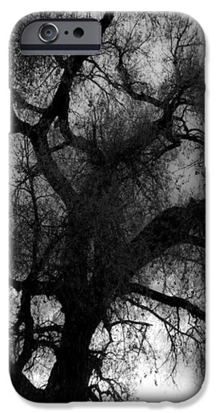Silhouette iPhone Case by James BO  Insogna