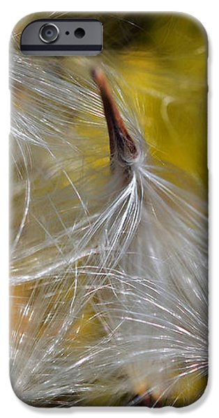 Silky Autumn iPhone Case by Susan Leggett