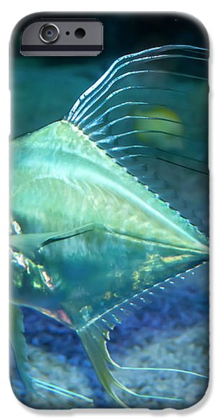 Silver Fish iPhone Case by Svetlana Sewell