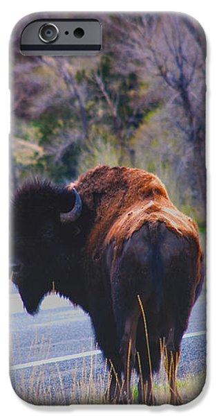 Single Buffalo in Yellowstone NP iPhone Case by Susanne Van Hulst
