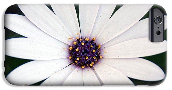 Daughter Gift iPhone Cases - Single White Daisy Macro iPhone Case by Georgiana Romanovna