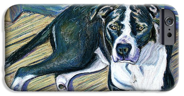 Boxer iPhone Cases - Sittin on the Dock iPhone Case by D Renee Wilson