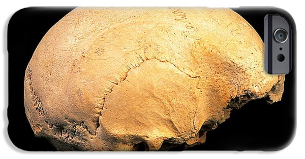 Evolution Of Humanity iPhone Cases - Skull 4, Sima De Los Huesos iPhone Case by Javier Truebamsf
