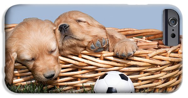 Toy Store Photographs iPhone Cases - Sleeping Puppies in Basket and Toy Ball iPhone Case by Cindy Singleton