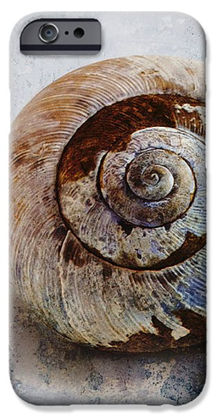 Snail Shell iPhone Case by Ron Jones