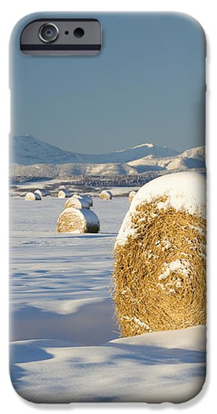 Snow-covered Hay Bales Okotoks iPhone Case by Michael Interisano
