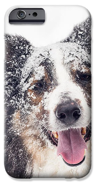 Snow Covered iPhone Case by Joye Ardyn Durham