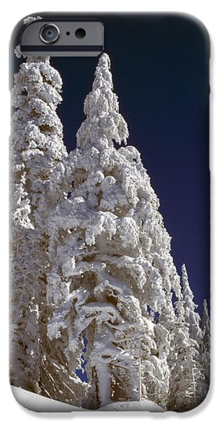 Snow-covered Pine Trees On Mount Hood iPhone Case by Natural Selection Craig Tuttle