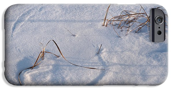 Snow iPhone Cases - Snow Covered Prairie iPhone Case by Steve Gadomski