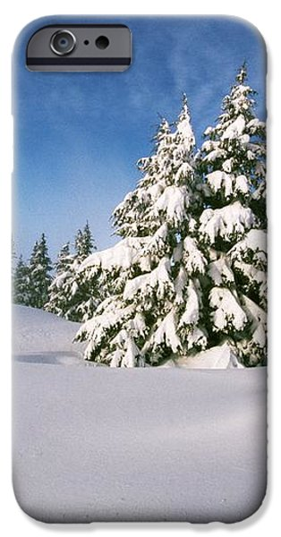Snow Covered Trees In The Oregon iPhone Case by Natural Selection Craig Tuttle