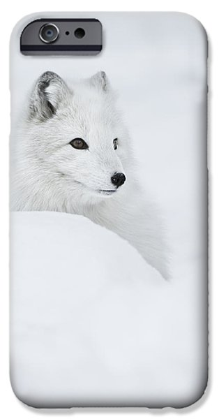 Norway iPhone Cases - Snow Queen iPhone Case by Andy Astbury