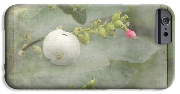 Berry Pyrography iPhone Cases - Snowberry tales iPhone Case by Steppeland -
