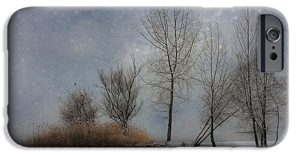 Winter Trees Photographs iPhone Cases - Snowfall iPhone Case by Joana Kruse
