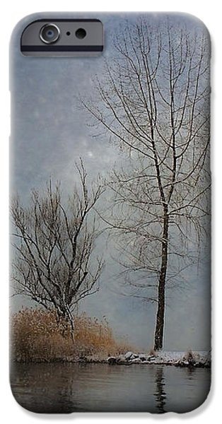 snowfall iPhone Case by Joana Kruse