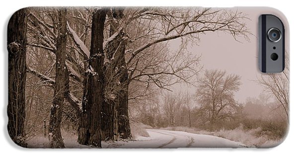 Snowy iPhone Cases - Snowy Country Road - Sepia iPhone Case by Carol Groenen