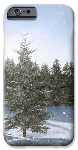 Snowy Day iPhone Cases - Snowy Flurries Falling In The Sunshine iPhone Case by Susan Dykstra