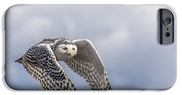 Snowy Owl iPhone Cases - Snowy Owl in Flight iPhone Case by Ian Stotesbury