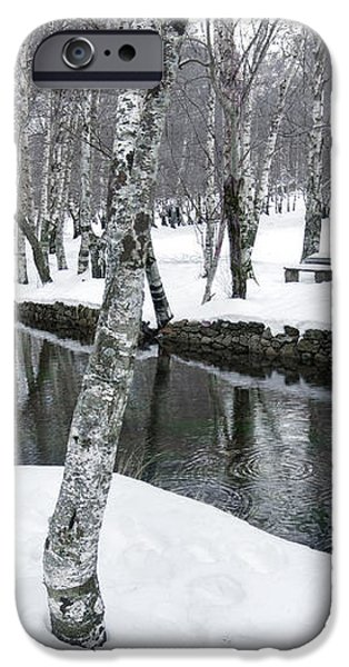 Snowy Park iPhone Case by Carlos Caetano