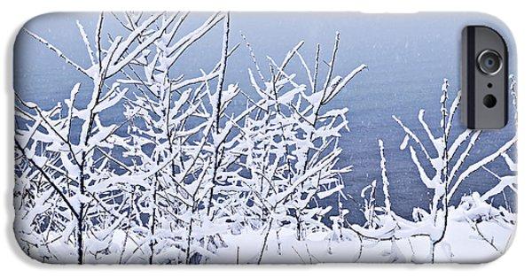 Winter iPhone Cases - Snowy trees iPhone Case by Elena Elisseeva