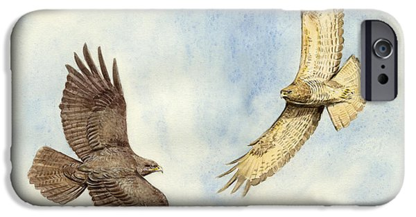 Soaring Paintings iPhone Cases - Soaring Buzzards iPhone Case by Chris Pendleton
