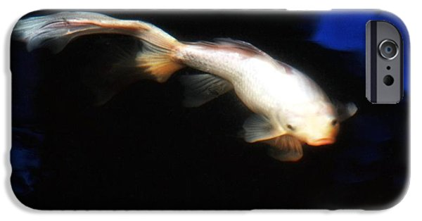 Butterfly Koi Photographs iPhone Cases - Soft Focus Comet iPhone Case by Don Mann