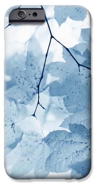 Softness of Blue Leaves iPhone Case by Jennie Marie Schell