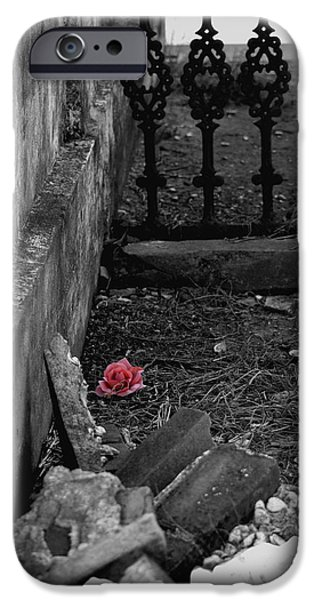 Solitary Rose iPhone Case by Renee Barnes