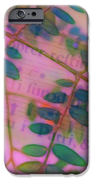 Song of the Honey Locust iPhone Case by Judi Bagwell