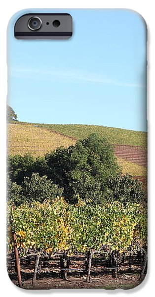 Sonoma Vineyards - Sonoma California - 5D19307 iPhone Case by Wingsdomain Art and Photography