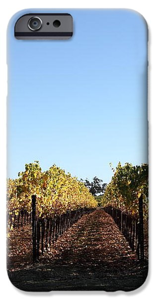 Sonoma Vineyards - Sonoma California - 5D19314 iPhone Case by Wingsdomain Art and Photography