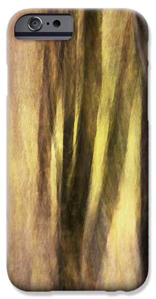 Sourwoods in Autumn Abstract iPhone Case by Rob Travis