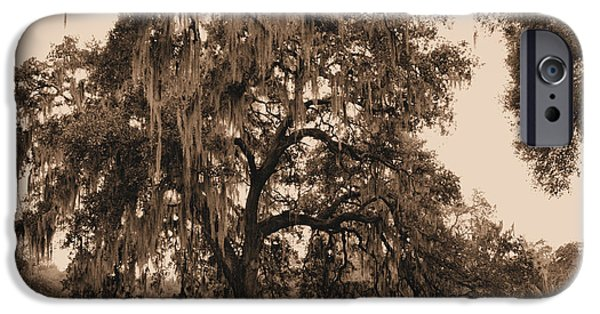 Overhang iPhone Cases - Southern Charm iPhone Case by Kristin Elmquist