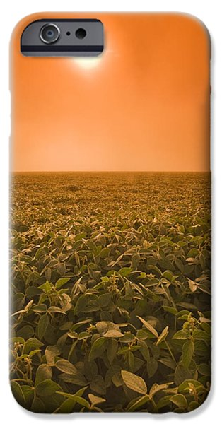 Soybean Field On A Misty Morning iPhone Case by Dave Reede